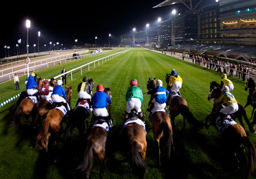Live racing data opens up whole new range of betting opportunities