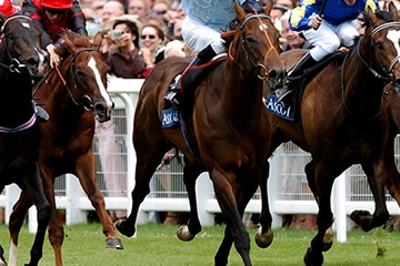 SIS granted exclusive fixed-odds Ascot media rights