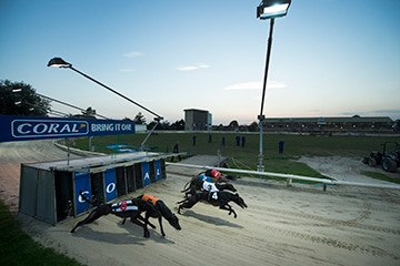 SIS signs second Greyhound tote pool deal in the US