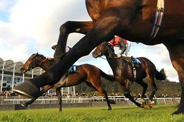 Pferdewetten.de enhances horse racing offering with SIS's 24/7 Live Betting Channel